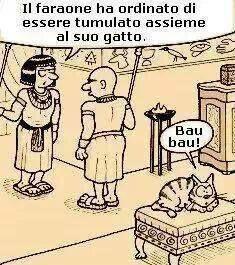 O bau o miao