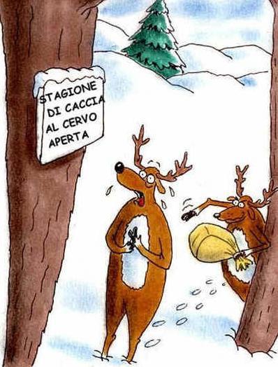 cornuto d'un cervo!