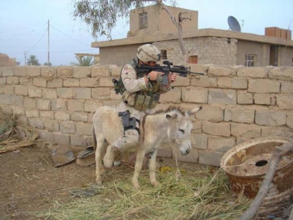 Soldato a mulo