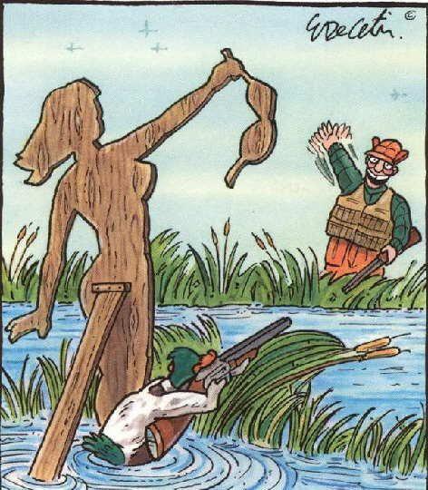 inganni ornitologici