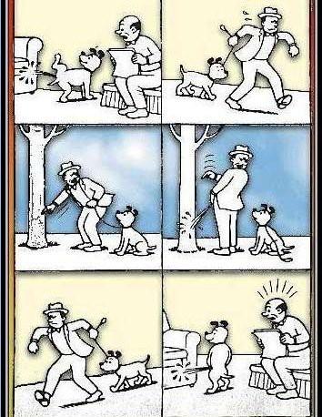 addestramento cani maldestro