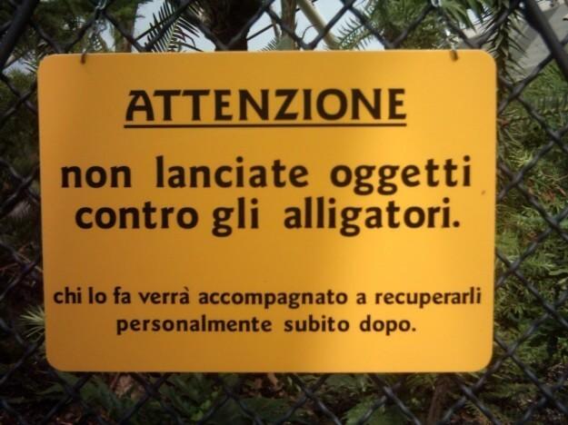 Non lanciate cibo agli alligatori