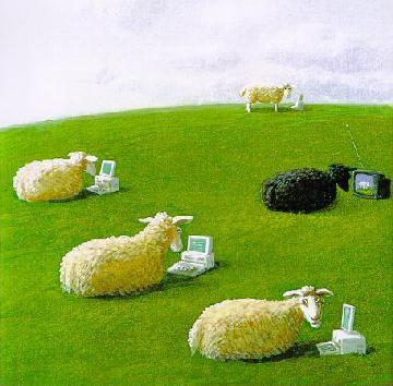 pecore tecnologicamente avanzate