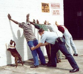 perquisizione da cani