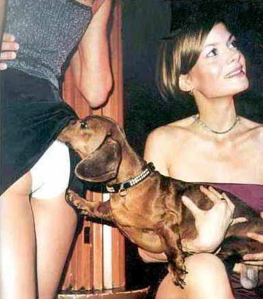 molestie canine
